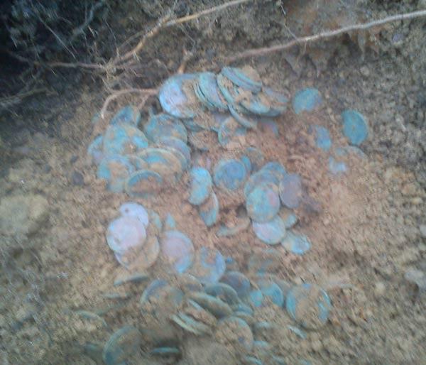 клад медных монет (фото)