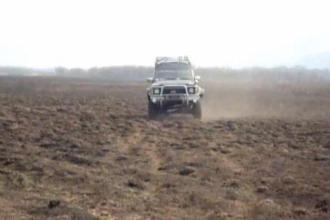 Поиски с металлоискателем в Сибири