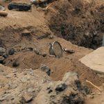 Археологи раскопали уникальные артефакты Кушанской империи